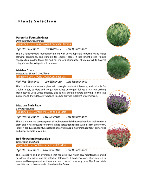 PLANTS SELECTION