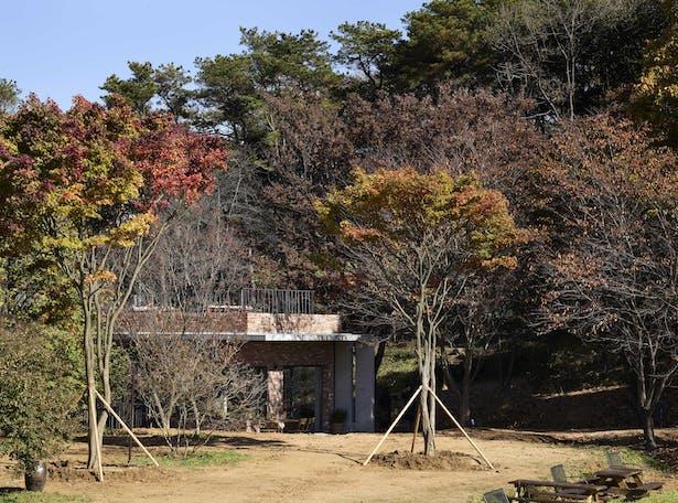 by kim yong kwan