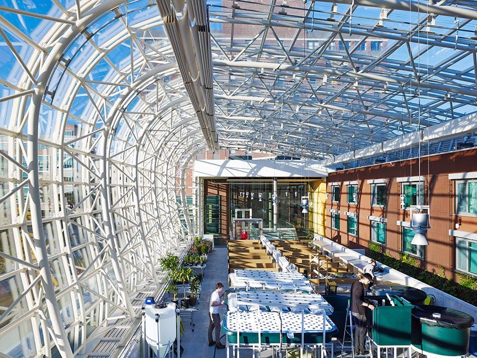 Location Chicago IL US My Role Architect And Interior Design