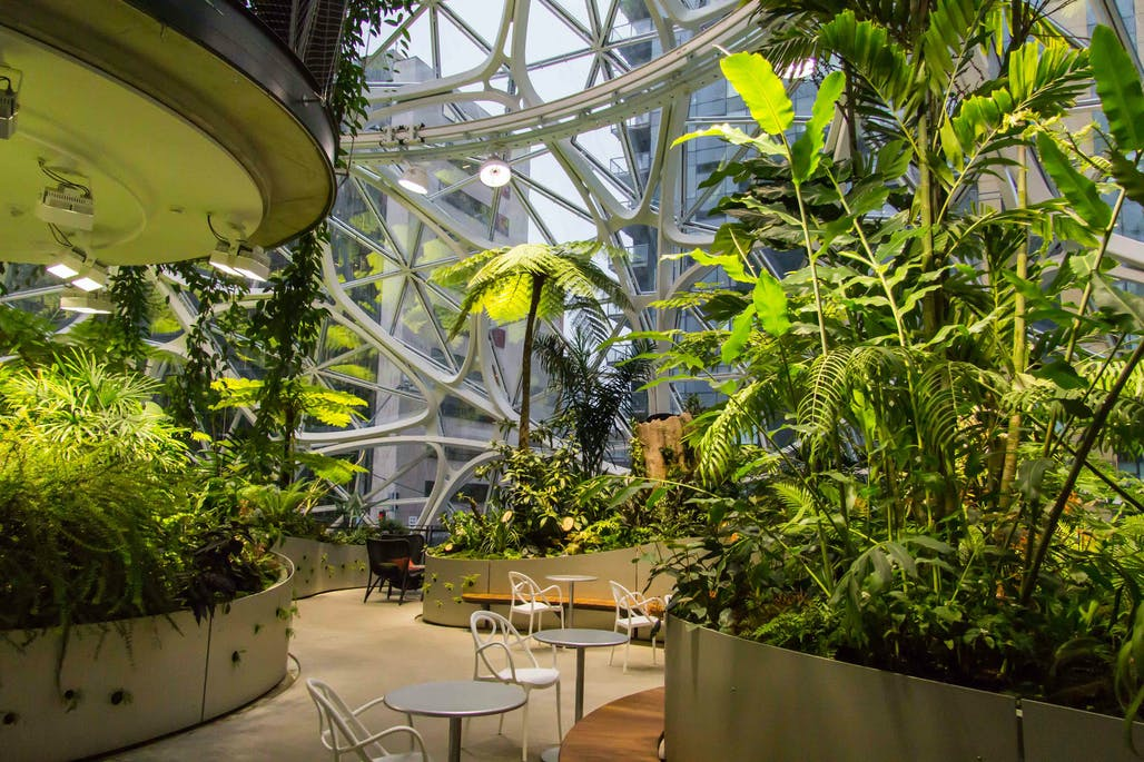 Amazon S Spheres Are Now Partially Accessible To The Public