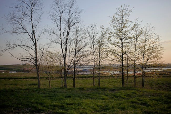 Photo by Kipp Wettstein, courtesy of the City of New York: NYC Parks, Freshkills Park, and the Department of Sanitation