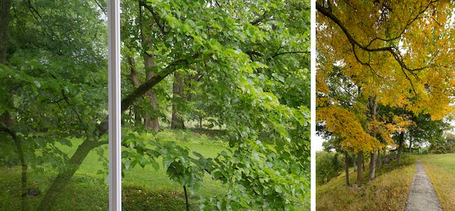 Dyptych VIII © Robin Hill 2014.
