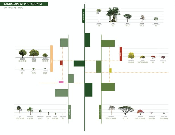 Conceptual diagram of planting scheme supplementing the existing lines of vegetation to unite the 'dispersed pearls' of the city. Dryfo Urbanism places landscape as the protagonist of urbanization instead of another top-down modernist or informal patchwork design