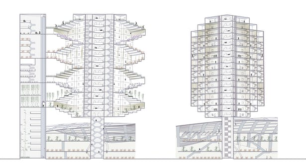 The section describes the combination of social housing and brownstone tyology, people living inside can see half of the senery outside is sky-garden and half of the senery outside is sky.