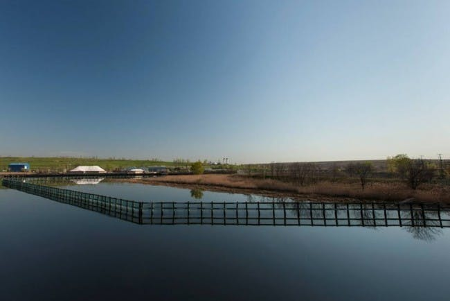Photo by Stephen Mallon, courtesy of the City of New York: NYC Parks, Freshkills Park, and the Department of Sanitation
