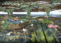 New Landscapes of Biomimicry and Biodiversity