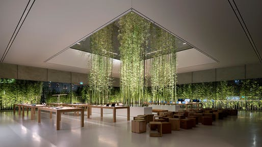 Apple Store, Macau, Sands Cotai: Interior of retail floor with bamboo planters. Photo © Nigel Young/Foster+Partners.