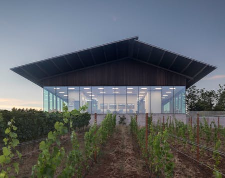 Waechter Architecture strives for a simple, elemental architecture. Shown: Furioso Winery; Image courtesy of Waechter Architecture.