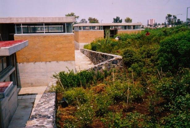 Centro para Invidentes y Débiles Visuales - Taller de Arquitectura