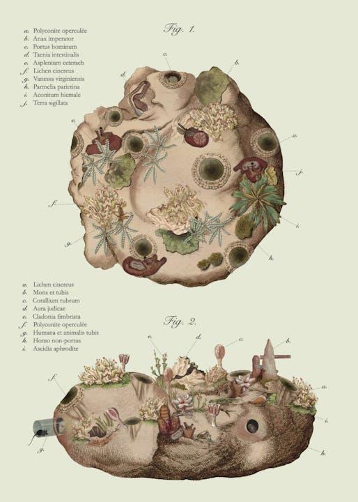 """pneumastudio, """"Terra Sigillata,"""" 2017. Collage by Cathryn Dwyre. Courtesy of pneumastudio."""