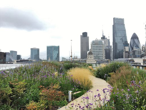 Planning and Delivering Green Roofs in the City of London, EC2 by City of London Corporation.