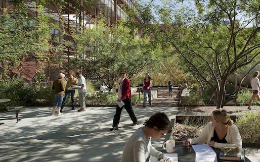 Underwood Family Sonoran Landscape Laboratory | Ten Eyck Landscape Architects | Photo by Bill Timmerman