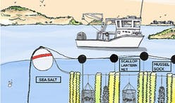 "Fuller Challenge winner says his GreenWave 3D ocean farm concept ""could feed the world"""