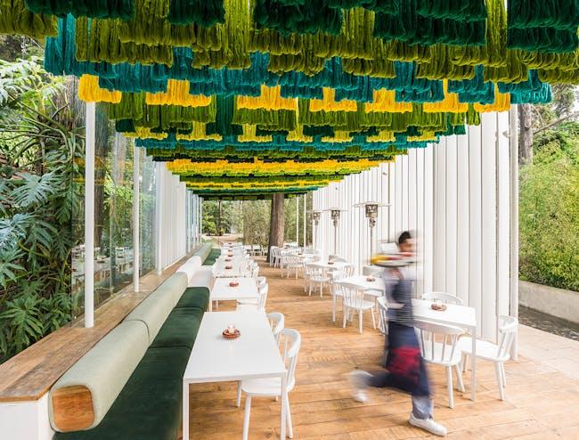 Taller KEN's Zona 14 Canopy. Photo: Andres Asturias
