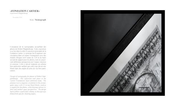 'Fondation Cartier'