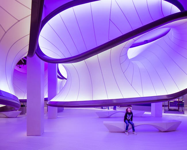 Mathematics – The Winton Gallery, Zaha Hadid Architects. Photo: Luke Hayes.