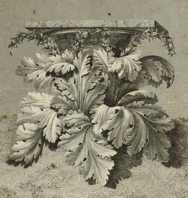 'The Origin of the Corinthian Order', engraving.