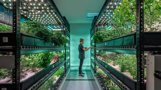 A vertical farming setup from farm.one. Image: farm.one.