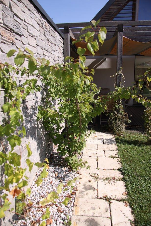 House A, garden