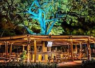 Tres Ceibas Beach Bar
