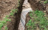 Roman mosaic floor discovered beneath vineyard in Italy