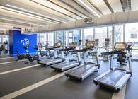 Seton Hall University Wellness Center