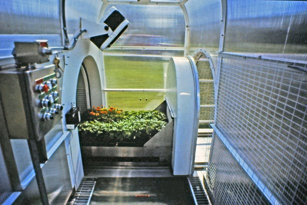 The plants automatically or manually moving from the insulated chamber into the greenhouse section of the structure.