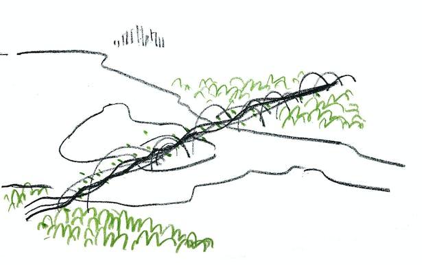 Duwamish Crossings: Conceptual Sketch (Wittman Estes)