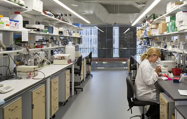 The facility features large, flexible and open research labs and will support research activities for 50 Principal Investigators as well as visiting scientists, eminent scholars and clinical researchers.