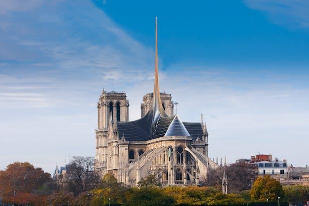 Notre Dame's Spine_OF STUDIO_Back