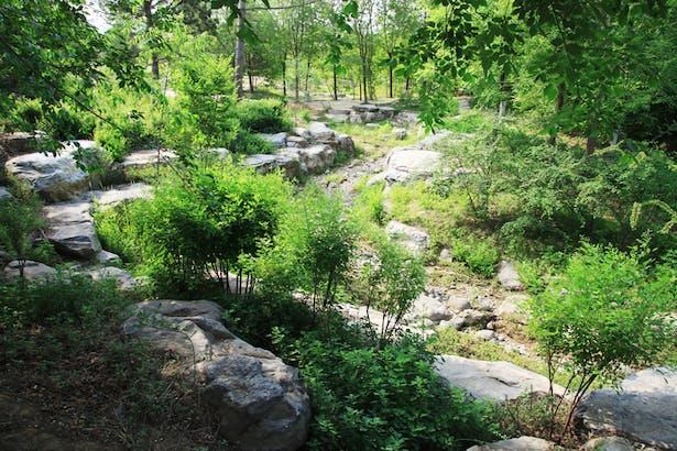 Scenic Spot in Beijing Olympic Forestry Park