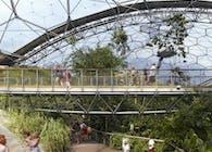 Eden Rainforest Walkway