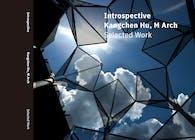 Intropective