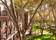 Engineering Quad. Redesign - Pratt Institute