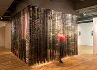Lenticular Curtain | BREATHTAKING: Constructed Landscapes