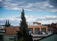 Vrazova: Roof flat