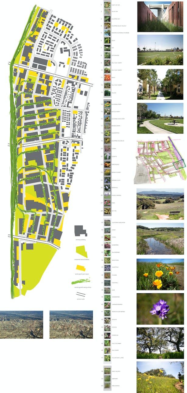 Final Board - Landscape Mapping Studies