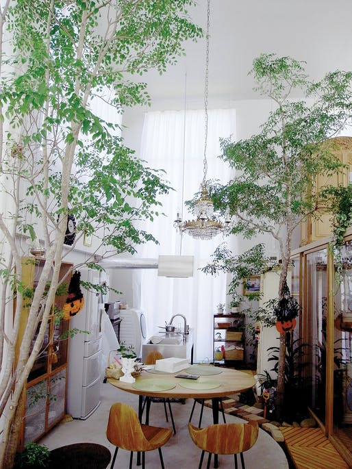 Interior view of House with Plants. ©junya.ishigami+associates