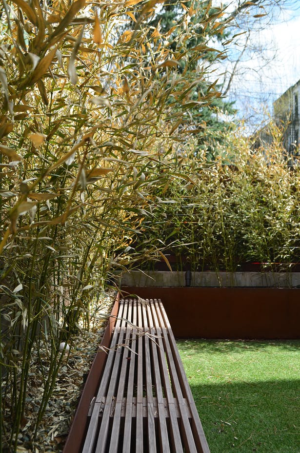 Weathering Steel Bamboo Planters Provide Privacy in Backyard with Ipe Bench