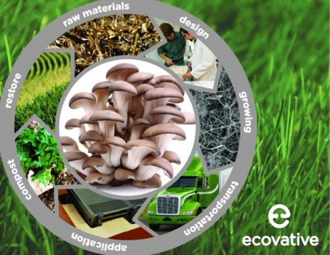 2013 Challenge Semi-finalist: Mushroom Packaging (Ecovative). Photo courtesy of challenge.bfi.org.