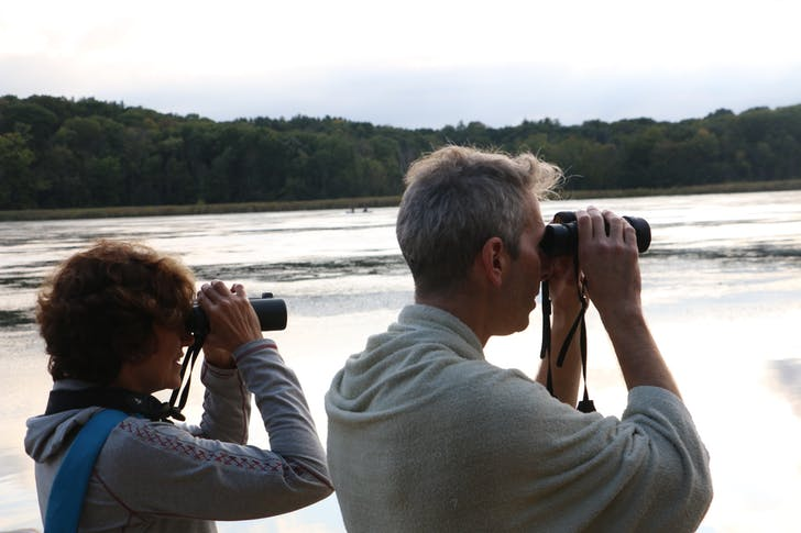 Bird-watching at Camp Wandawega. Photo by Prajakt Karmarkar.