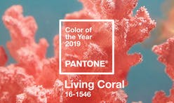 Two words, six digits...Pantone's 2019 Color of the Year is Living Coral