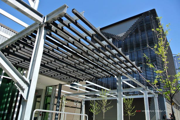 Steel removed from a old, repurposed warehouse on the urban site is now a trellis.