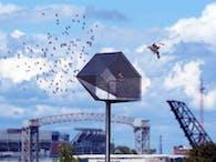 La casa dell'Uccello (2011)