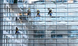Architects lobby for bird-friendly glass as NYC overhauls cladding regulations