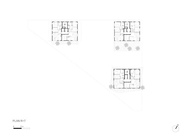 Plan R+7