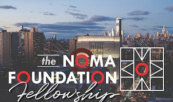 Inaugural NOMA Foundation Fellowship cohort selected for employment and mentorship opportunities