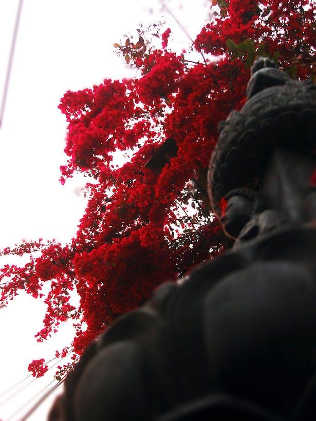the Buddhist Chaitya