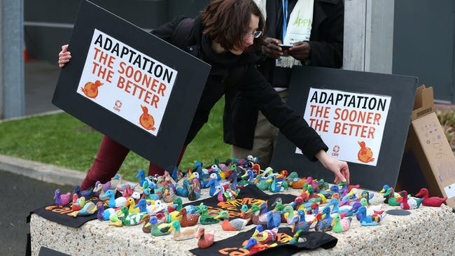 196 papier-maché ducks made by French children. Credit: UN Climate Change / Flickr