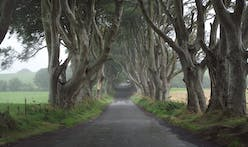 Ireland to plant 440 million trees by 2040